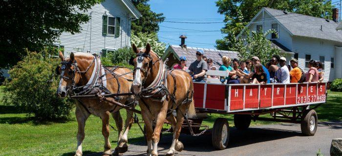horse drawn hayride
