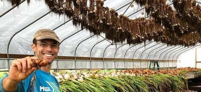man surrounded by garlic and onions drying
