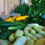 cucumbers squash and greens