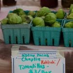 Tomatillo in pints on table