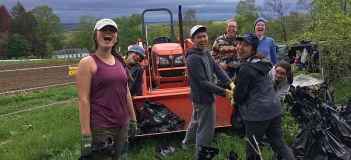 college students loading bags of dirt into tractor