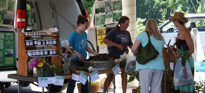 farmers selling products to customers at a farm stand