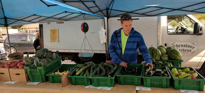 Farmer organizing vegetables at farm stand