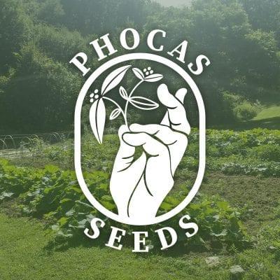 logo of phocas seeds